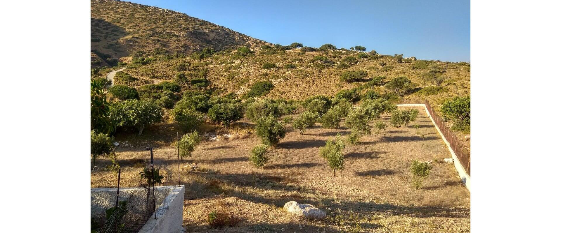 Kokkina Leros plot for sale L694